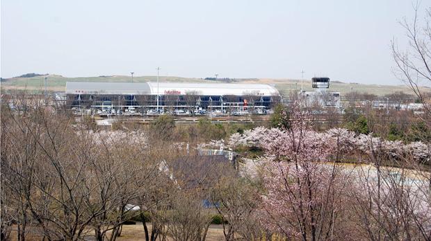 桜と福島空港
